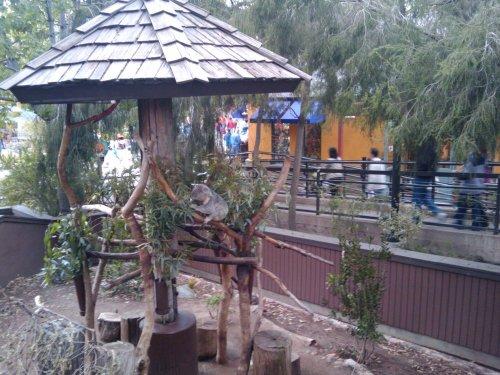 2009-12-26_15